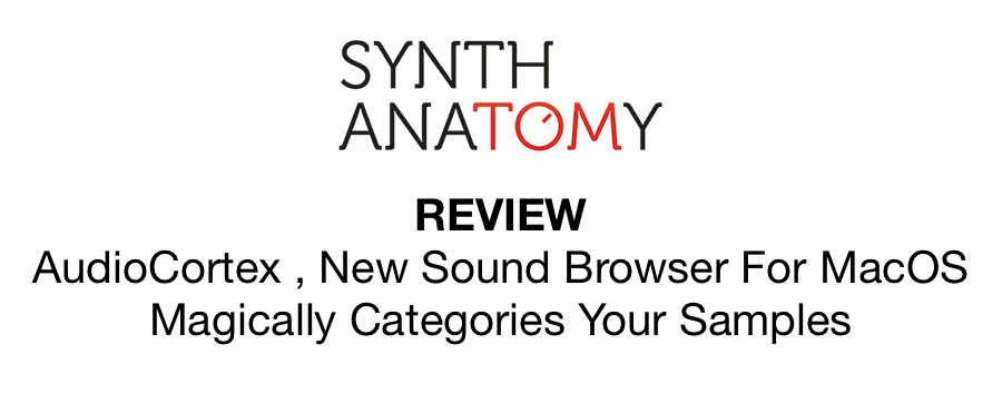 Synth Anatomy Review